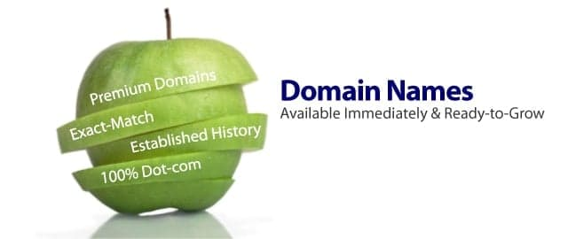 It All Starts With The Right Domain Name